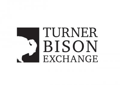turner bison